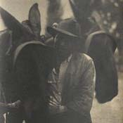 Man with Mules, North Carolina
